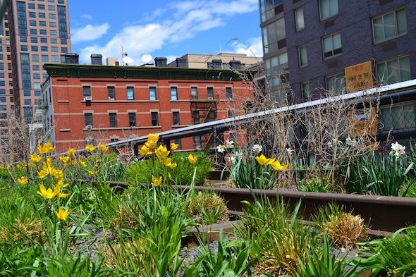 Highline Park, New York