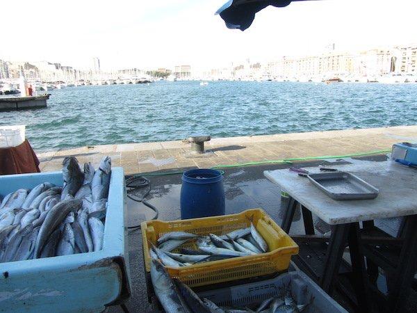 Marseille_Fischmarkt