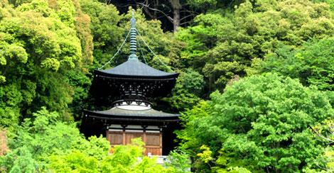 Eine Pagode in einem der Tempelgärten von Kyoto