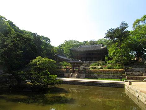 In den bewaldeten Gärten des sehr sehenswerten Changdeokgung Palastes. Ein Teich mit Karpfen und dahinter, etwas erhöht, ein Pavillon, der einst die königliche Bibliothek beheimatete.