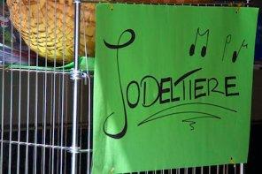 """Grünes Papier vor Souvenirläden, darauf handgeschrieben """"Jodeltiere"""""""