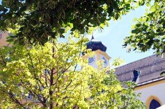 Ein Kirchturm hinter starkgrünem Blätterdach der Bäume