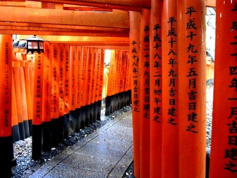 Rote torii Tore im wunderbaren Fushimi Inarii Schrein in Kyoto