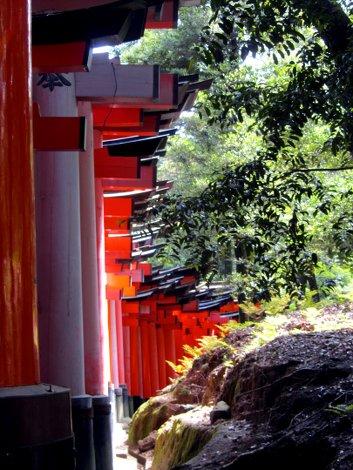 Rote torii Tore und Wald im wunderbaren Fushimi Inarii Schrein in Kyoto