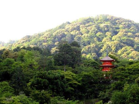Eine rote Pagode sticht im grünen Wald des Kiyomizu-dera Tempels in Kyoto hervor