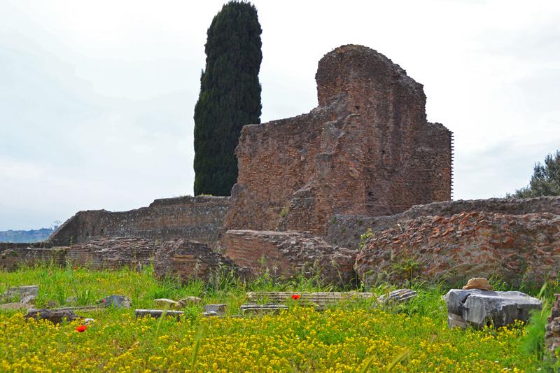 Überreste von roten Ziegelmauern, eine Zypresse wächst dahinter, im Gras zwischen gelben Blumen und rotem Mohn liegt eine zerbrochene Säule