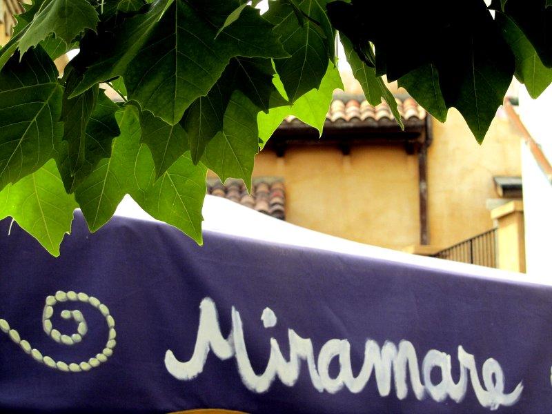 Detail am italienischen Hafen: ein violetter Sonnenschirm, auf dem weiß Miramare geschrieben steht