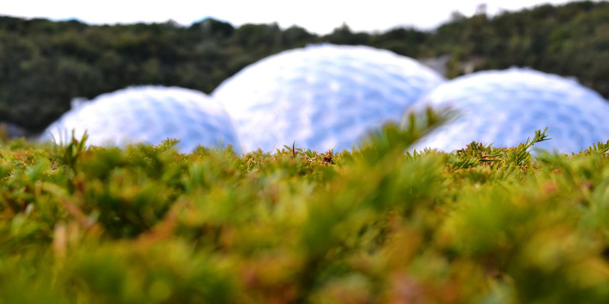 Die Biome des Eden Projects in Cornwall sind riesige Gewächshäuser