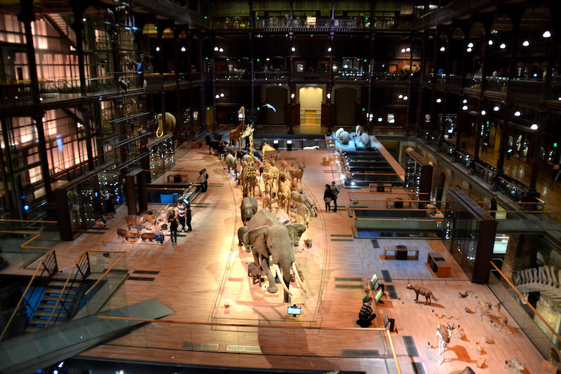 Die Grande Galerie de l'Evolution in Paris