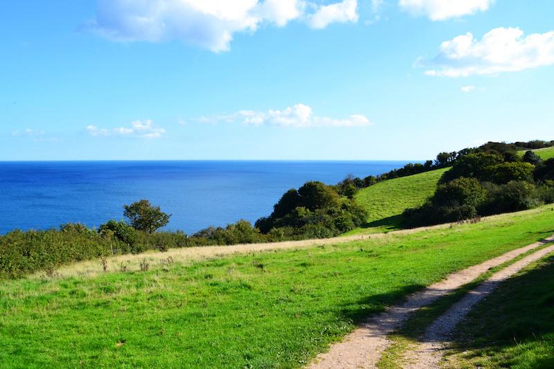 Die Küstenlandschaft rund um Beer in Devon