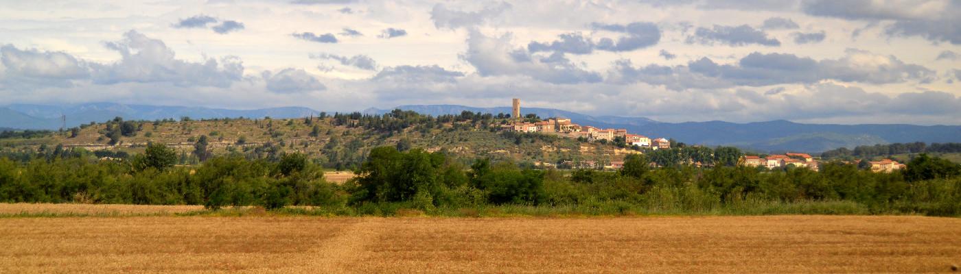 An meinem Zugfenster vorbei fliegt die betörende Landschaft Südfrankreichs - Slow Travel