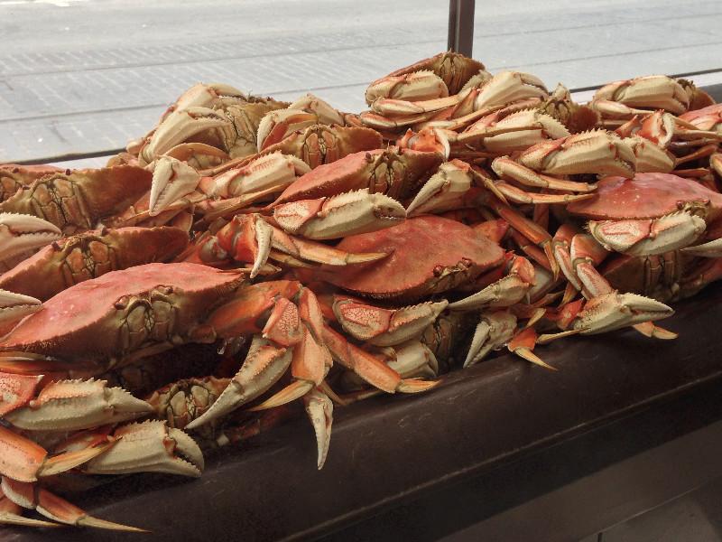 Krabben vor den Lokalen der Fisherman's Wharf