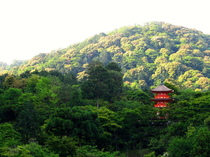 Pagode in Japan / Kyoto