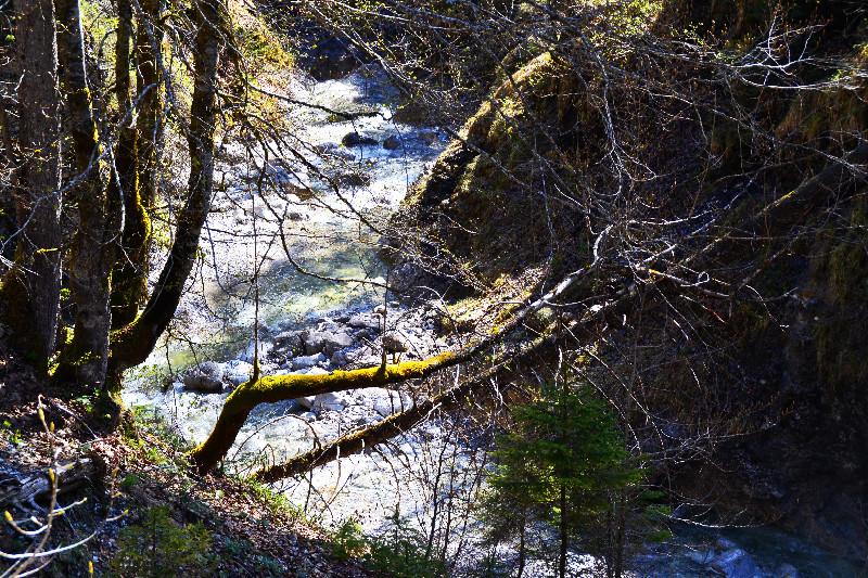 Unter uns gurgelt ein wilder Bergbach