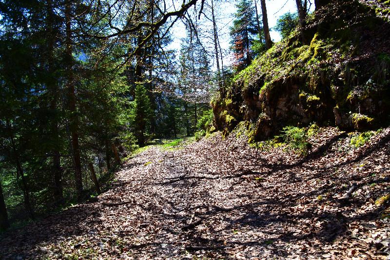 Sonnige Wege auf unserer Bergtour