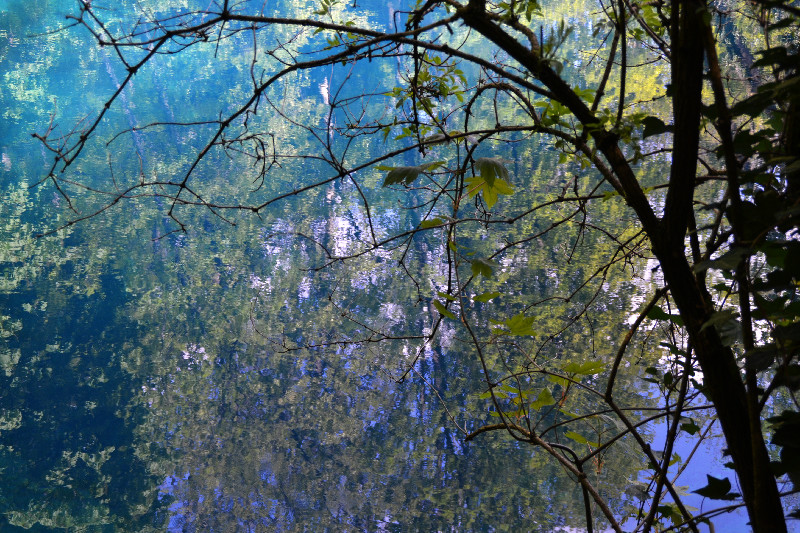 Perfekte Spiegelung am Blautopf in Blaubeuren