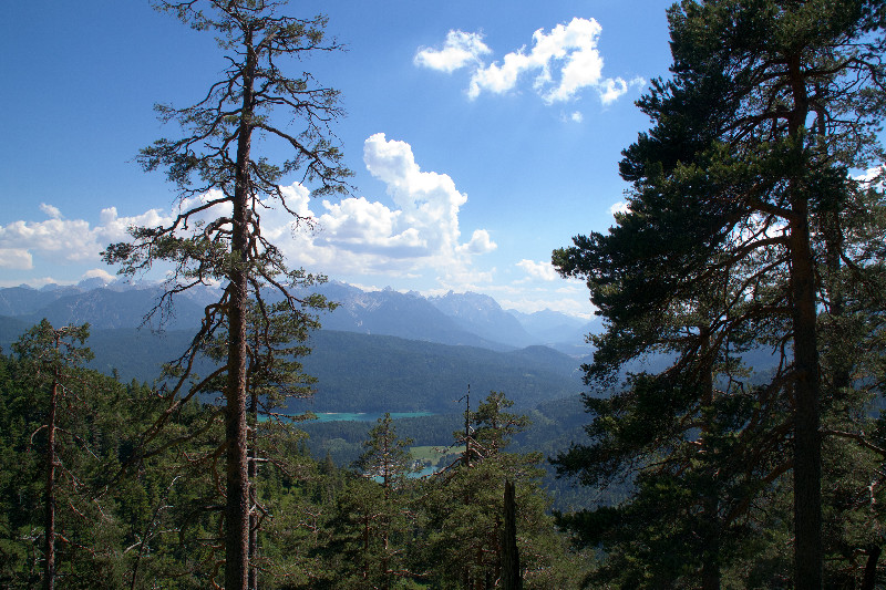 Blick auf Wald, Berge und See auf dem Weg hoch zum Herzogstand