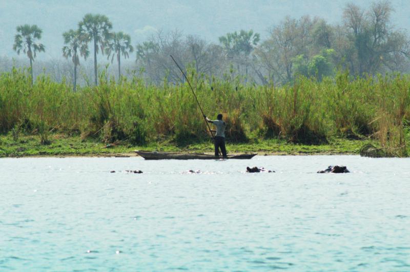 Ein Fischerboot und jede Menge Flusspferde im Liwonde Nationalpark, Malawi