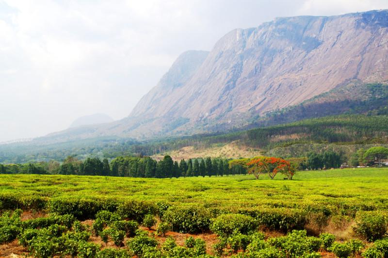 Das Mulanja Massiv: 1000 Meter Felswand
