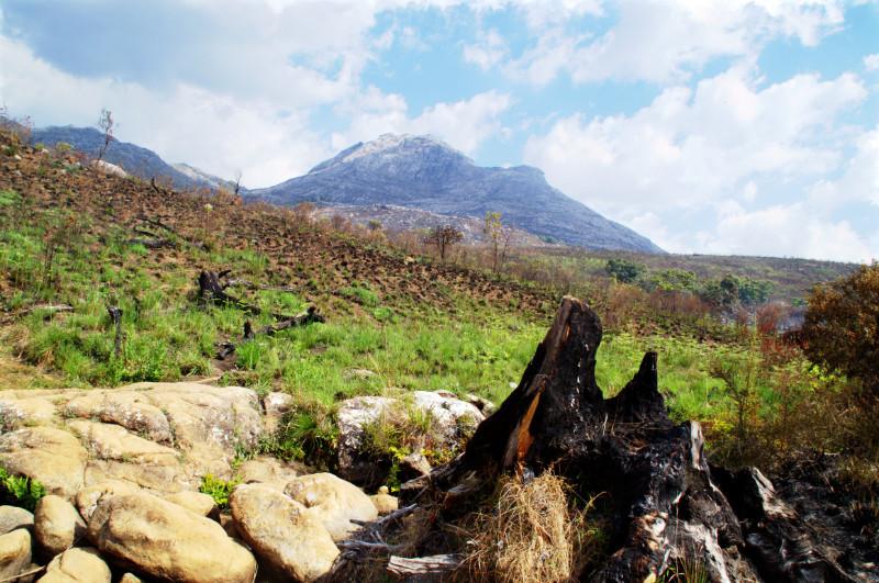 Wandern auf dem weitläufigen Mulanje Massiv in Malawi