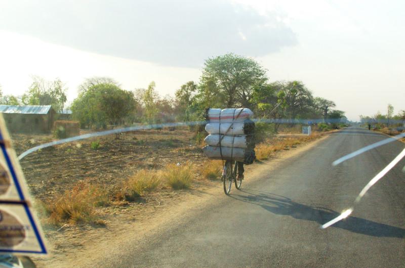 Das Fahrrad gehört zu den Hauptverkehrsmitteln für die Malawis - neben dem Minibus