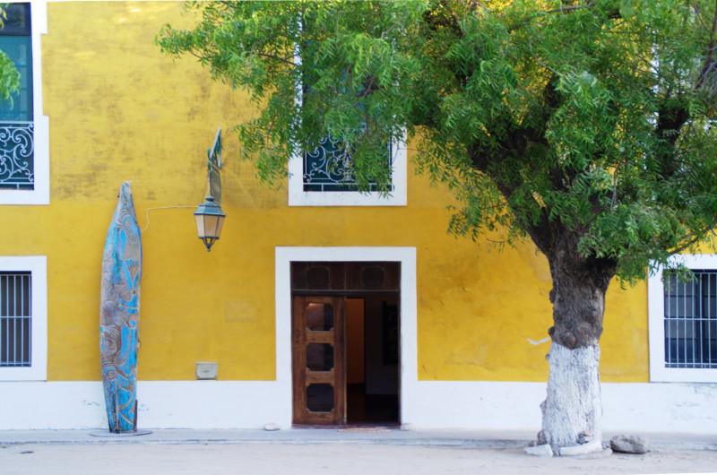 Kräftig gelbes Kolonialhaus mit grünem Baum davor auf Ilha de Moçambique