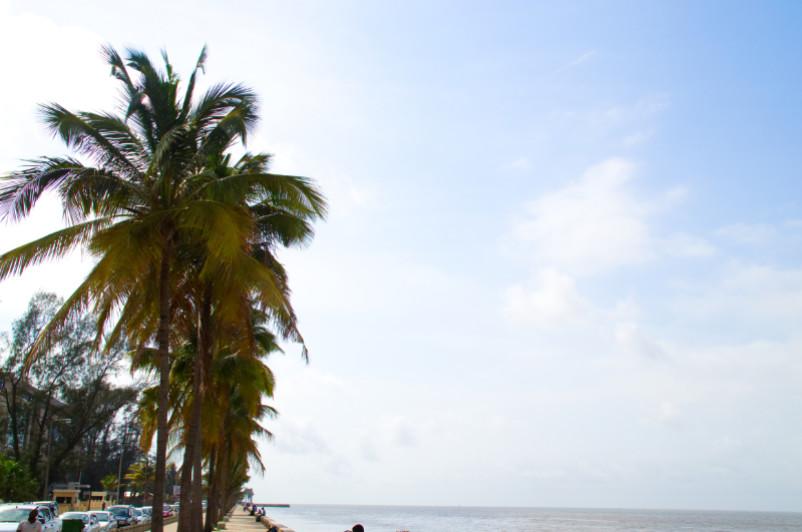 Uferpromenade mit Palmen in Maputo, Mosambik