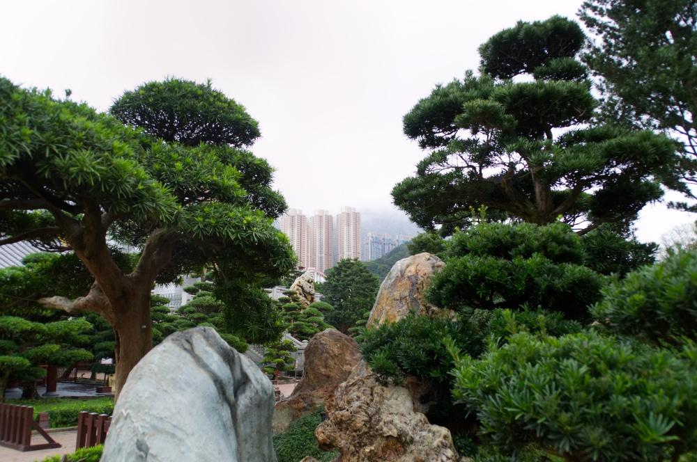 Hongkong: Hochhäuser umrahmen den hübschen Nan Lian Garden