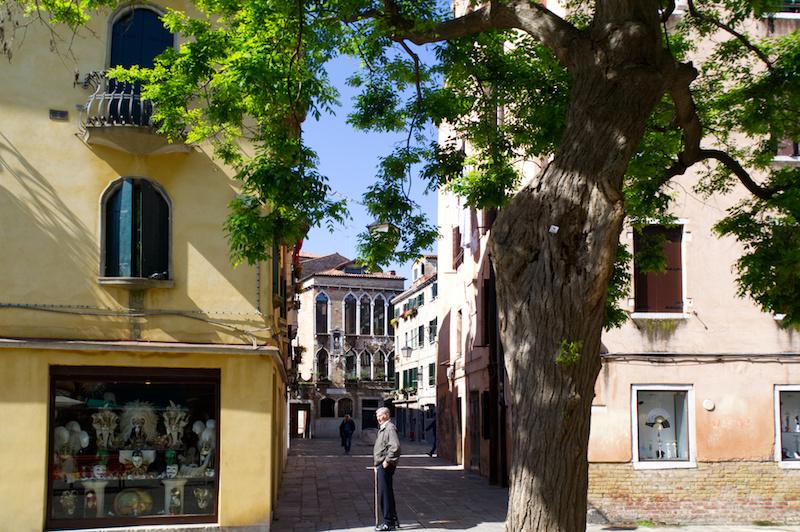 Venedig: Ein Baum, dahinter steht ein alter Mann vor einer ruhigen Seitengasse