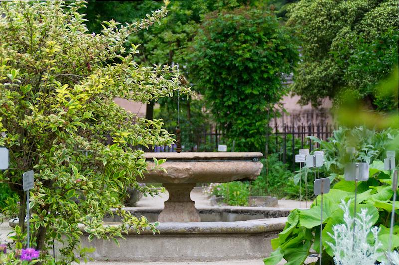 Padua: Springbrunnen im Botanischen Garten