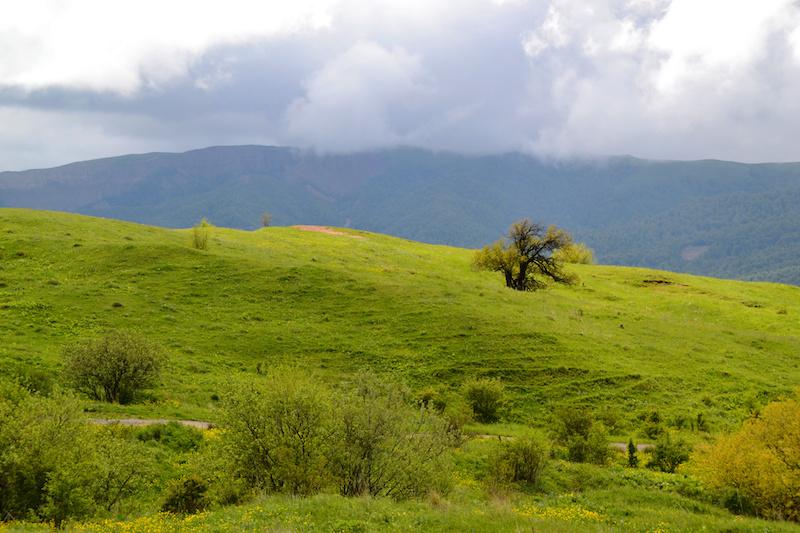 Die sanfte Hügellandschaft von Kakheti, Georgien