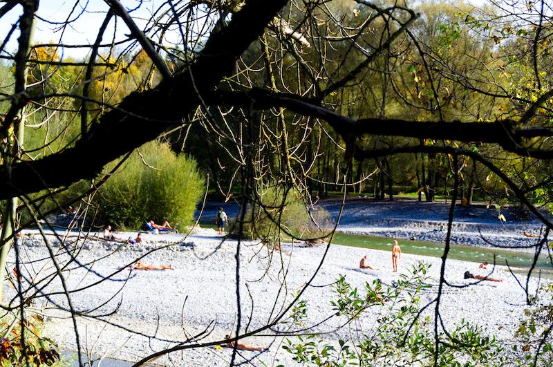 Das Geäst eines kahlen Baumes am Flaucher in München