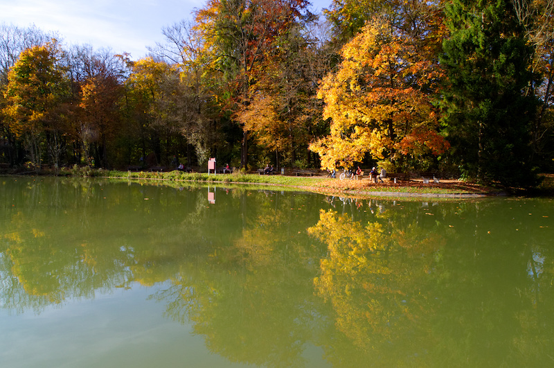 Hinterbrüheler See in München mit bunten Bäumen im goldenen Herbst