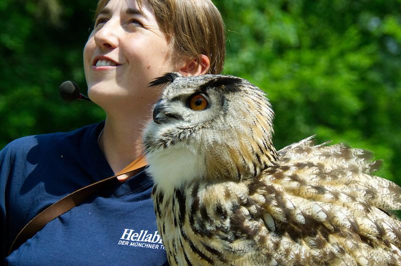 Greifvogelschau im Tierpark Hellabrunn: junge Trainerin und Eule
