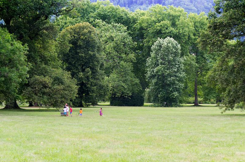 Kinder auf einer Wiese im Schlosspark Eggenberg