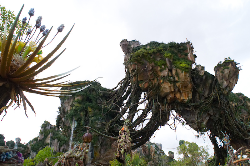 Die fliegenden Berge von Pandora in Disney's Animal Kingdom