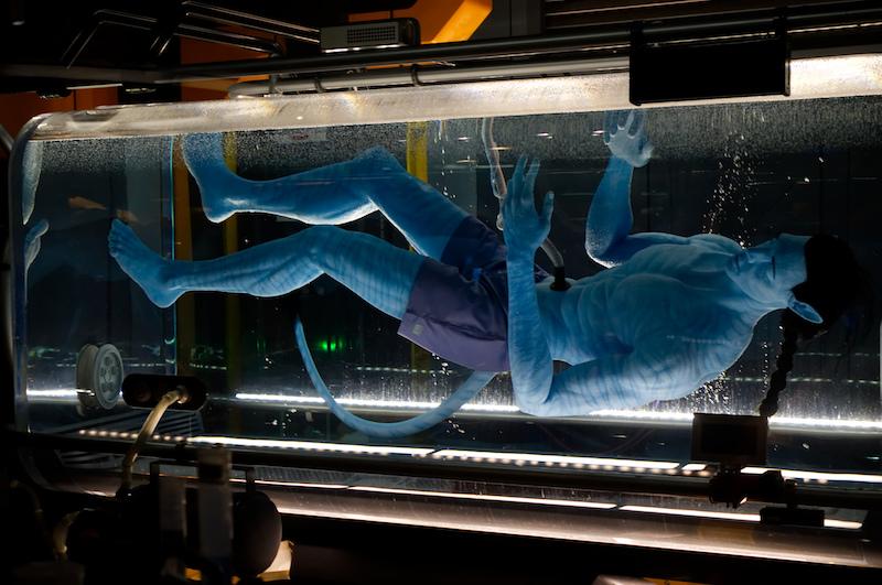 Ein Avatar in der Warteschlange zu Flights of Passage