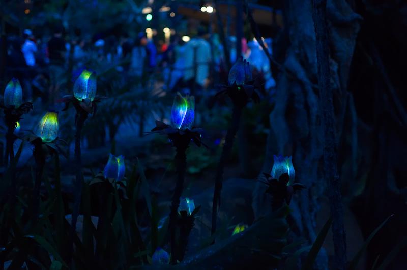 Leuchtende Blumen in Pandora