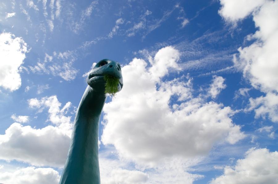 Kopf und Hals eines Brontosauriers in Disney's Hollywood Studios
