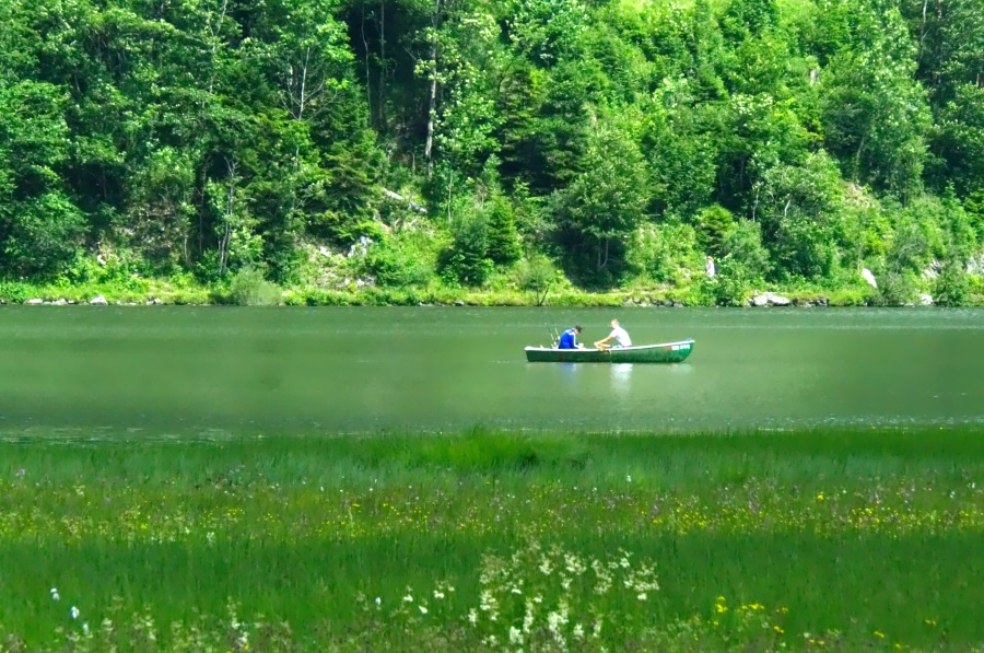 Zwei Ruderer auf dem grünen Spitzingsee