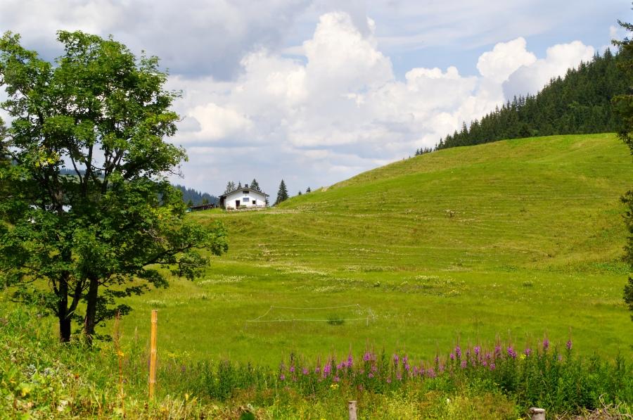 Alm an der Lenggrieser Hütte
