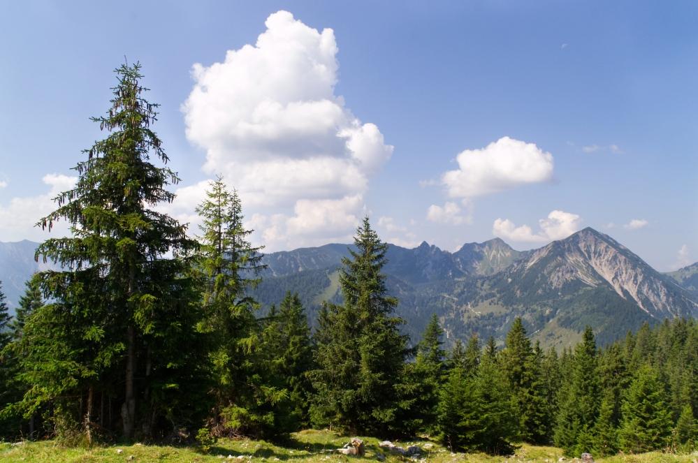 Blick vom Seebergkopf