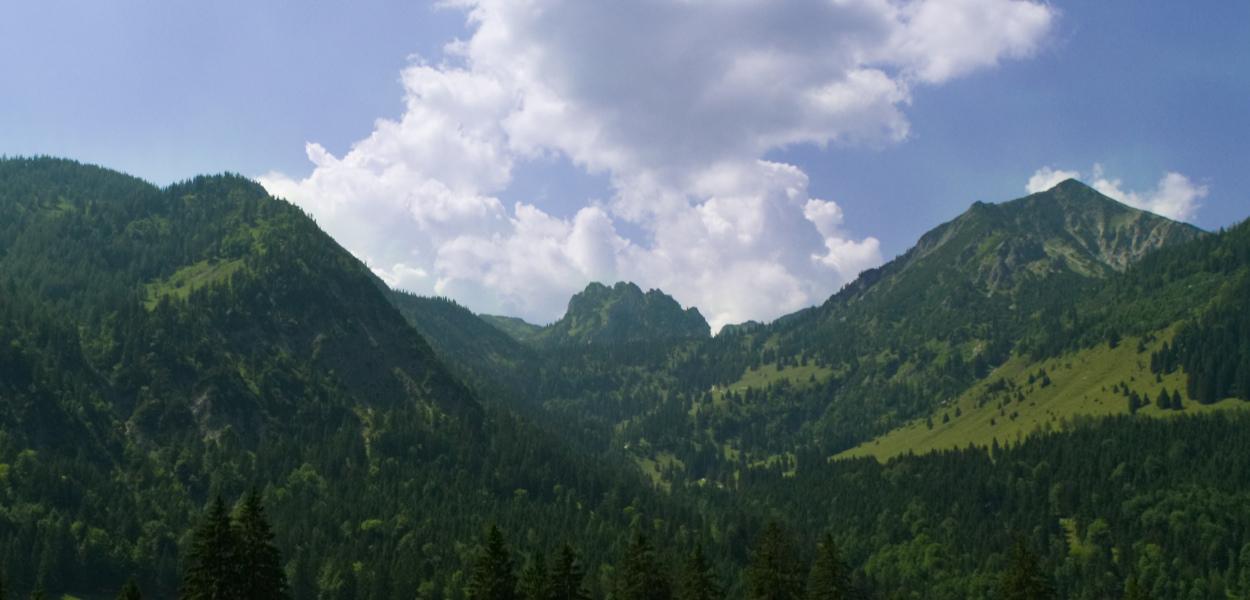 Wandern in der Nähe von Bayrischzell