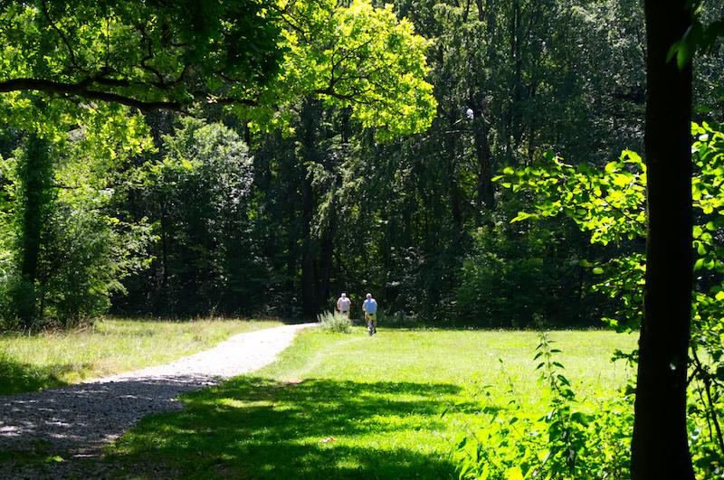Fahrradfahrer im Wald an der Isar