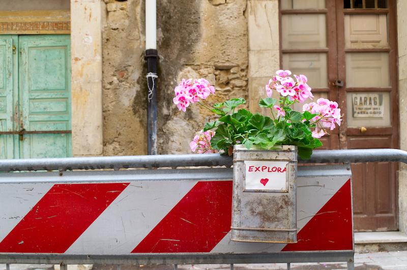 Kleine Blumenkiste an einem Bauzaun in Syrakus