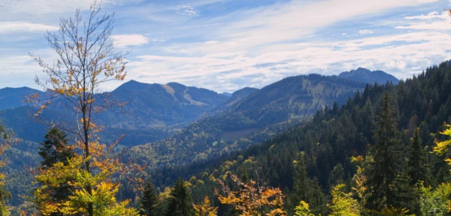 Blick von der Gindealm im Herbst