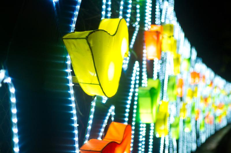 Eine Wand voller leuchtender Vögel