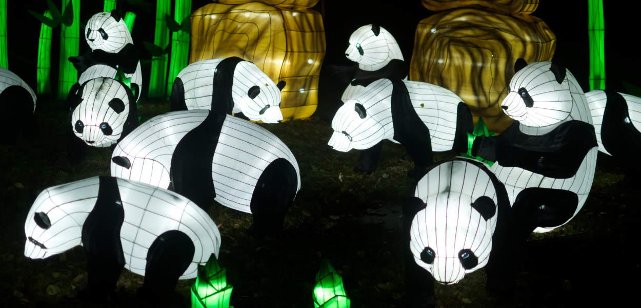 Panda-Laternen im Jardin des Plantes