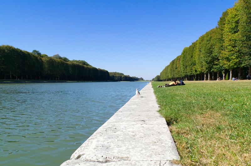 Der Große Kanal in Versailles mit Möwe