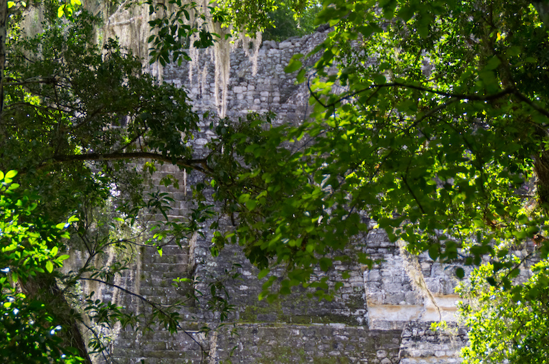 Pyramidenstufen hinter Bäumen